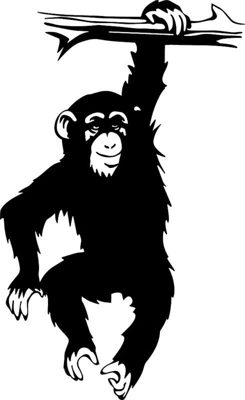 Monkey Vinyl Wall Decal Home Decor Hanging From Tree Kids Room Decal
